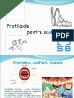 Profilaxie Pentru Scolari(1)