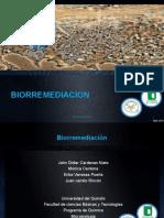 Expo Biorremediacion