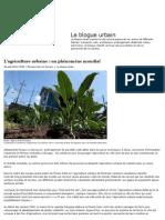 Agriculture Urbaine Phénomène Mondial_Le Devoir