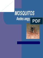 AEDES_UY