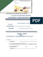 LISOSOMAS Seminario (3)