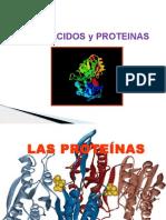 Aminoacidos y Proteínas