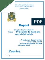 Principiile de Bază Ale Serviciului Public