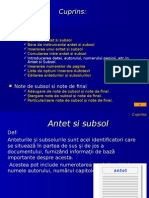 Antet Subsol Note de Subsol