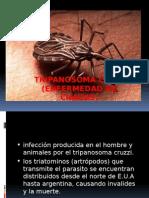 Parasitos en Sangre( Banco de Sangre)