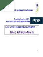Tema 3 Patrimonio Neto
