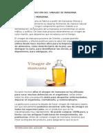 Elaboracion Del Vinagre de Manzana