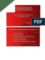 procedimiento especial civil santana..doc