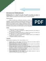 Nervioso - Semiologia Universidad de Carabobo sede Aragua