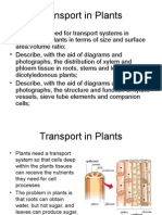 As 1 2 3 Plant Revision