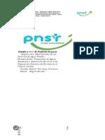 Estudio a Nivel de Perfil Del ProyectoCOCHAS GRANDES