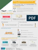 Perfil Del Internauta 2014