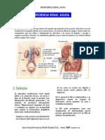 IRA PLUS MEDIC A.pdf
