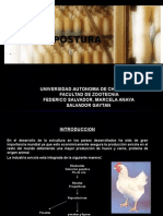 MANEJO DE AVES EN POSTURA-DIC 2010.ppt