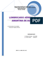 la amantina de sucre historia.pdf