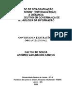 Governanca e Estrategia Organizacional