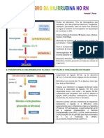 Fisiopatologia Da Bilirrubina Ictericia