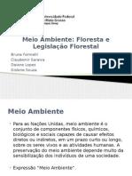 Meio Ambiente.pptx