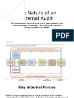 The Nature of an Internal Audit
