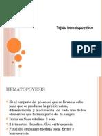 tejido hematopoyetico 2