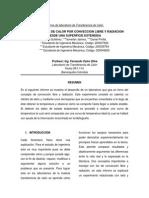 Lab. Convección Libre y Radiación