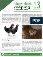 Rockrose-Ethnobiology Sheet 13 Hens