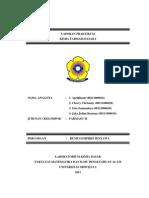 Percobaan2 Rumus Empiris Senyawa 141118210135 Conversion Gate01