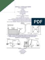 Fisica Net Experiencia de Laboratorio Hidrostatica