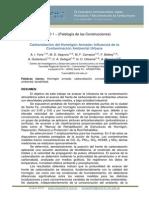 CINPAR 096.pdf