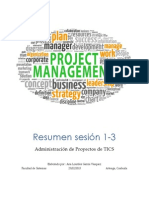 Resumen Project Management
