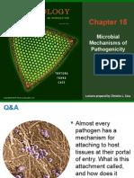Pdf Ffu Pdf Microbiology An Introduction By Gerard J Tortora