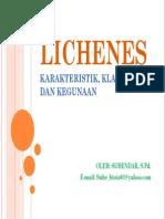 Lichen Es