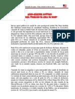Mini Studiu Piata Vinului in SUA_20135295718330
