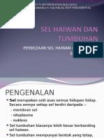 sel haiwan& tumbuhan.ppt