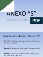 Presentacion Del Anexo S