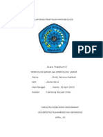 laporan praktikum enumerasi