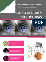 Globo Ocular