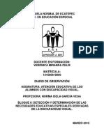 Diario Escuela Nacional de Ciegos (Atención Educativa de Alumnos con D.V) 1RA VISITA, 2DO PARCIAL, 2DO SEMESTRE