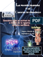 Guía activacion de las neuronas.pdf