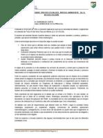 D.S 016-93-EM