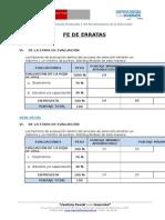 Fe de Erratas (1).docx