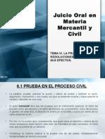 La Prueba y Las Resoluciones Judiciales en los Juicios Orales en Materia Mercantil y Civil