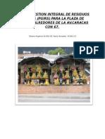 PROYECTO PGIRS.doc