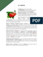 PRINCIPIO ACTIVO.docx