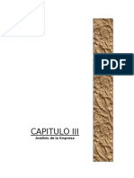 CAPITULO III.ANALISIS DE LA EMPRESA.doc