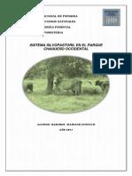 Trabajo de Agroforesteria (2)