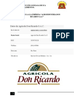 Informe Don Ricardo Para Foc