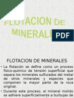 Flotacion de Minerales 1