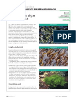 El Uso de Las Algas en Cosmética