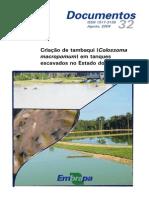 Criação de tambaqui em tanques  escavados no Estado do Amazonas